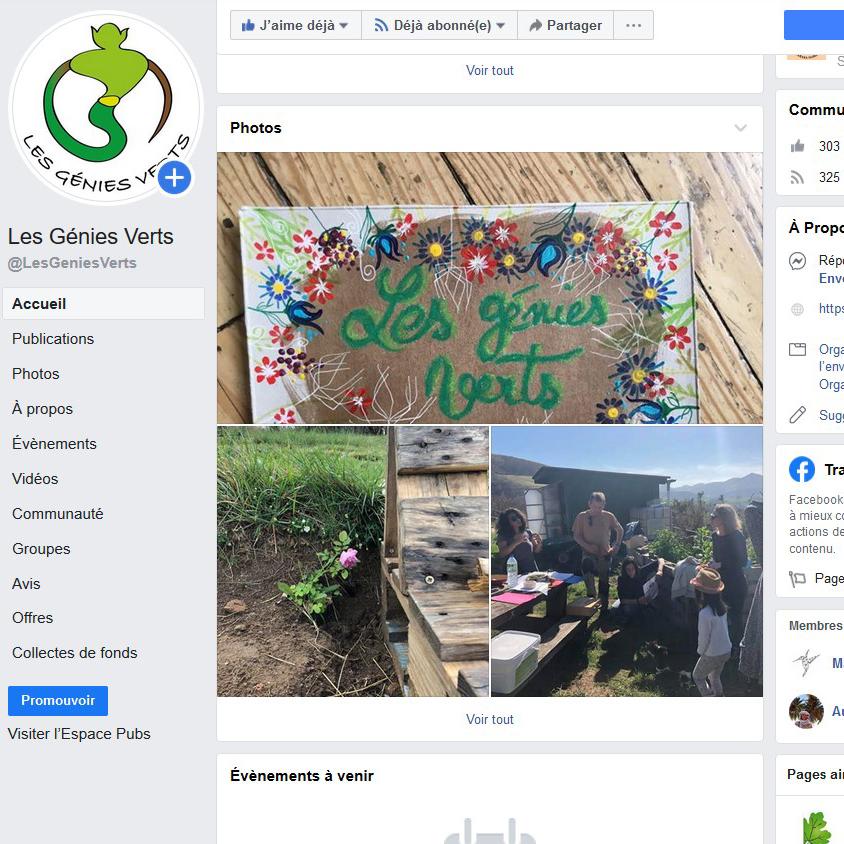 Apercu des réseaux sociaux avec la page Facebook des génies verts