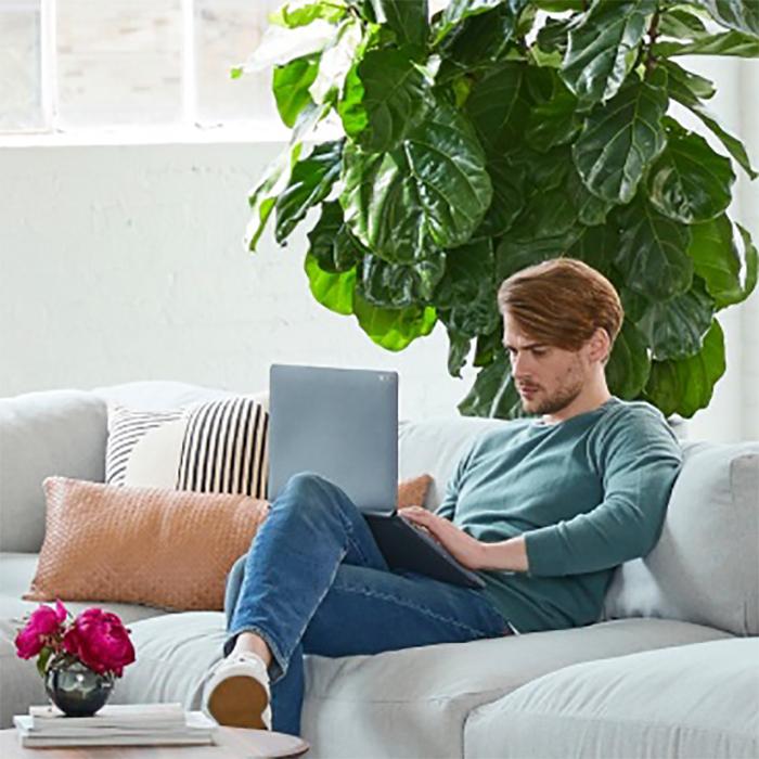 Photo d'une personne qui travaille sur un portable, entouré de plantes